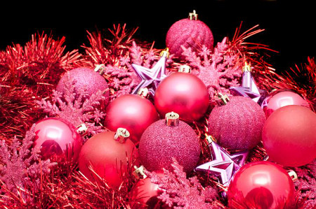 450 red_christmas_still_life